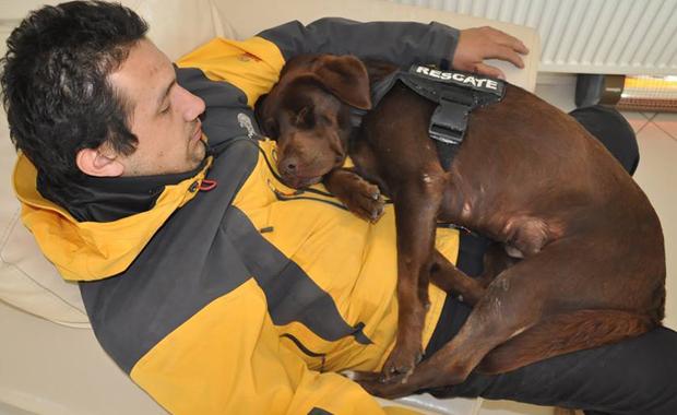 Murió Lola, la perra argentina que rescato victimas en todos