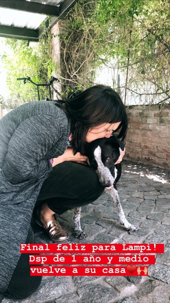 """Paula Chaves rescató un perro y logró el reencuentro con su dueña tras un año y medio: """"Final feliz para Lampi"""""""