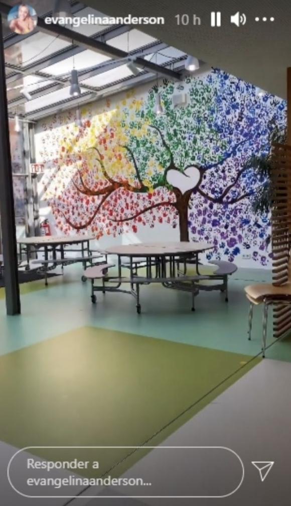 """Evangelina Anderson mostró cómo es el increíble colegio de sus hijos en Alemania: """"Para ingresar tienen que pasar por el túnel del arcoiris"""""""